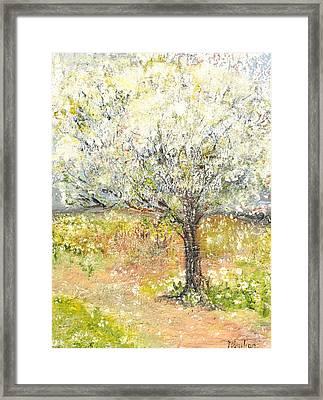 Spring Framed Print by Evelina Popilian