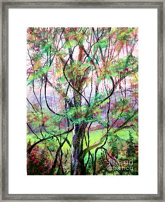 Spring For Fox Grapes Framed Print by Bruce Schrader