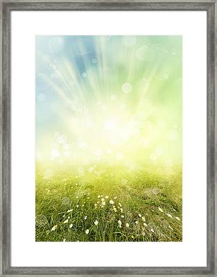 Spring Framed Print by Les Cunliffe