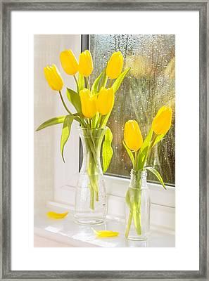 Spring Tulips Framed Print by Amanda Elwell
