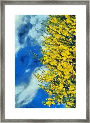 Spring Wild Flowers Framed Print by George Atsametakis