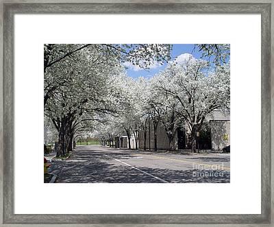 Springtime Corning Ny 1 Framed Print