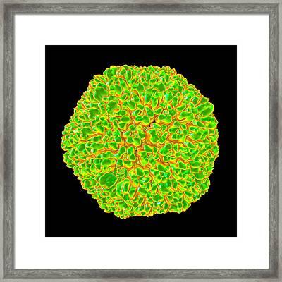 Sputnik Virophage Framed Print