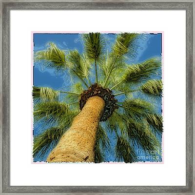 Square Polaroid Palm Tree Framed Print by Birgit Tyrrell
