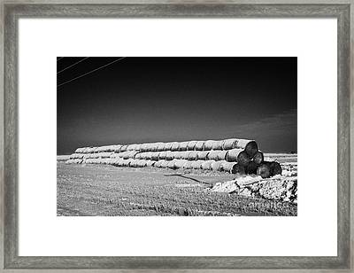 stack of frozen snow covered hay bales in a field Forget Saskatchewan Canada Framed Print