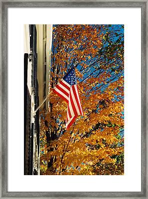 Standing Proud Framed Print by Joann Vitali