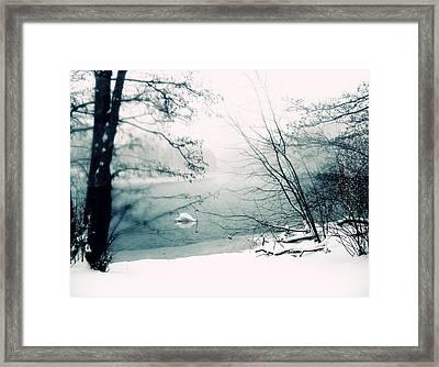 Stark Framed Print by Jessica Jenney