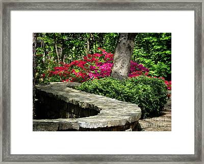 Stay On The Path Framed Print by Nava Thompson