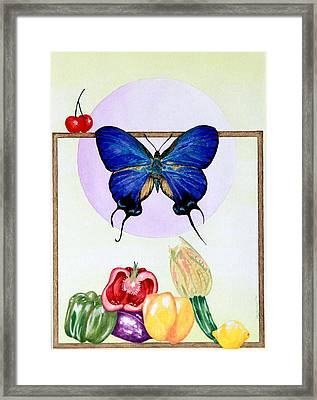 Still Life With Moth #2 Framed Print by Thomas Gronowski