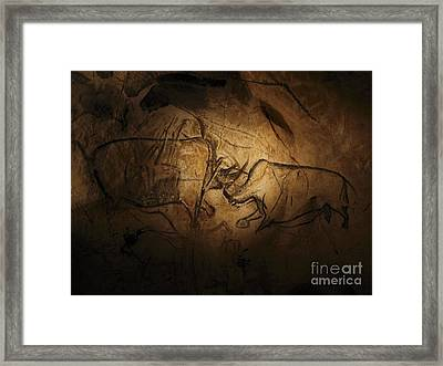 Stone-age Cave Paintings, Chauvet, France Framed Print by Javier Trueba/msf