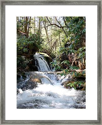 Stoney Creek Framed Print