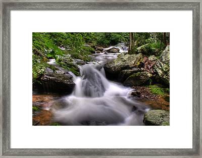 Framed Print featuring the photograph Summer Cascade by Rebecca Hiatt