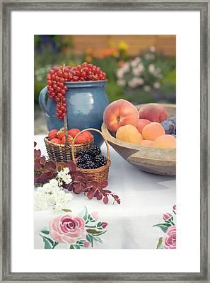 Summer Fruit Still Life On Table In Garden Framed Print