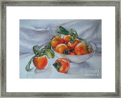 Summer Harvest  1 Persimmon Diospyros Framed Print
