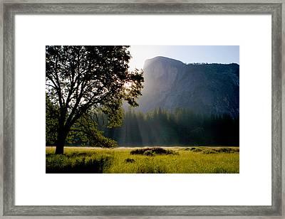 Summer Sunrise In Yosemite Valley Framed Print