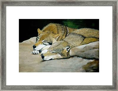 Sunbath Framed Print