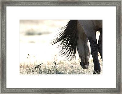 Sundowner Framed Print by Lourie Zipf