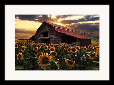 Red Roofed Barn Framed Prints