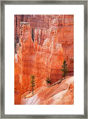 Sunrise Point Bryce Canyon National Park Framed Print
