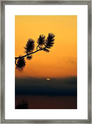 Framed Print featuring the photograph Sunset At Yosemite by Rima Biswas