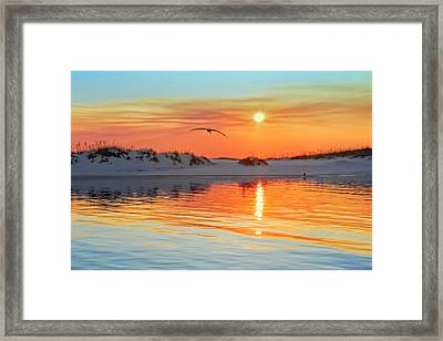 Sunswept Framed Print by Janet Fikar