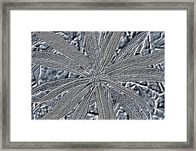 Surreal Plant Fine Art Print Framed Print
