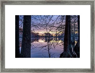 Swamp Sunrise Framed Print by David Morefield
