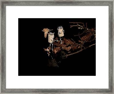 Szene Framed Print