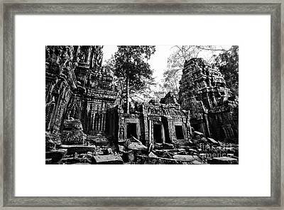 Ta Prohm Framed Print by Julian Cook