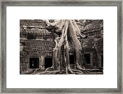 Ta Prohm Temple In Cambodia Framed Print by Artur Bogacki