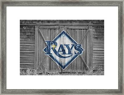 Tampa Bay Rays Framed Print by Joe Hamilton