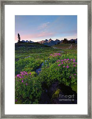 Tatoosh Dawn Framed Print