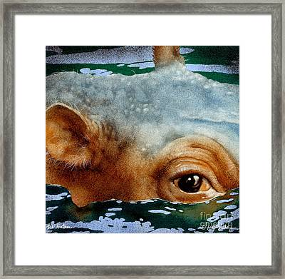 The Bather... Framed Print by Will Bullas