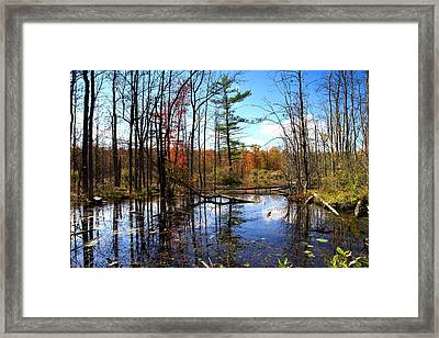 The Beautiful Fall Framed Print by Paul Ge