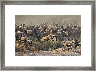 Framed Print featuring the photograph The Crossing by Roman Kurywczak