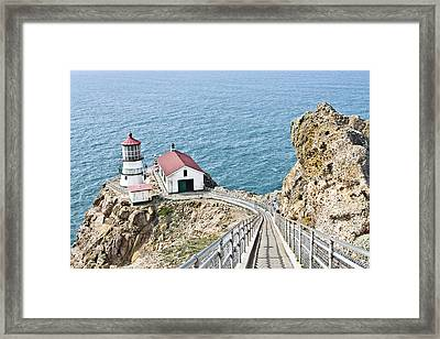 The Descent To Light Framed Print by Priya Ghose