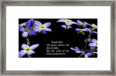 The Flower Fades Framed Print
