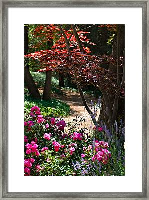 The Garden Path Framed Print by Michele Myers