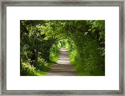 The Green Tunnel Framed Print