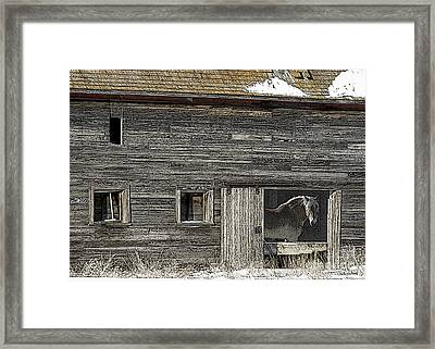 The Old Barn Framed Print by Judy Wood