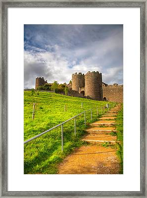 The Path Leadeth Me Home Framed Print by Adrian Evans
