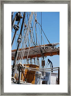 Framed Print featuring the photograph The Sail by Ramona Whiteaker