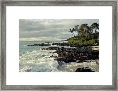 The Sea Framed Print by Sharon Mau