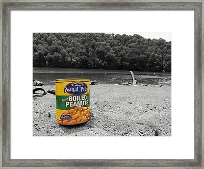 The South's Favorite Snack Framed Print by Brook Finley