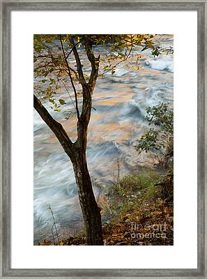 The View Framed Print by Iris Greenwell