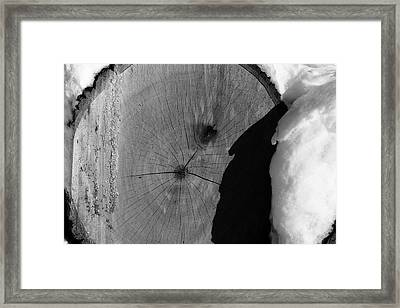 The Woodpile Framed Print