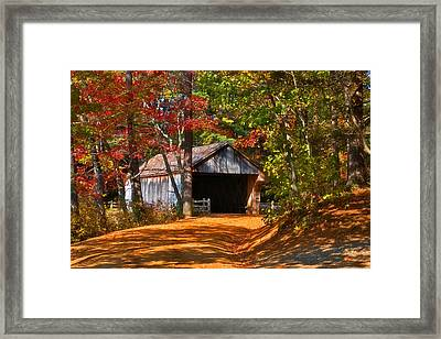 Through The Woods Framed Print by Joann Vitali