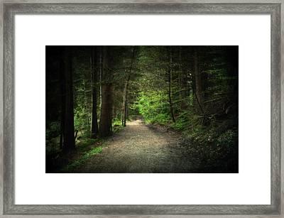 Through The Woods Framed Print by Svetlana Sewell