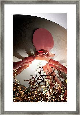 Tick Carrying Lyme Disease Bacteria Framed Print by Tim Vernon