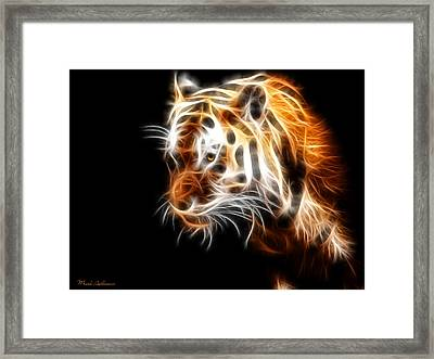 Tiger  Framed Print by Mark Ashkenazi